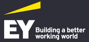 Ey Degree Apprenticeship In Business Leadership And Management Practice Job In Tyne Wear Business Career Full Time Jobs In Ey