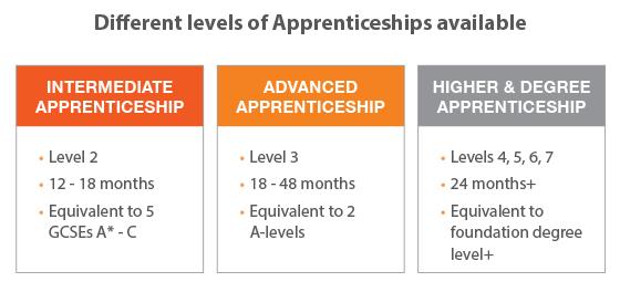 Levels of apprenticeships