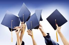 What is a graduate programme?