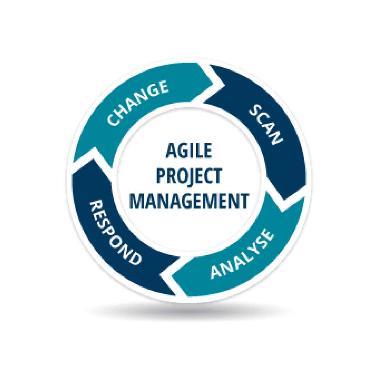 AGILE Project Management e-learning course