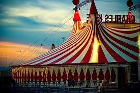 circus weird and wonderful courses