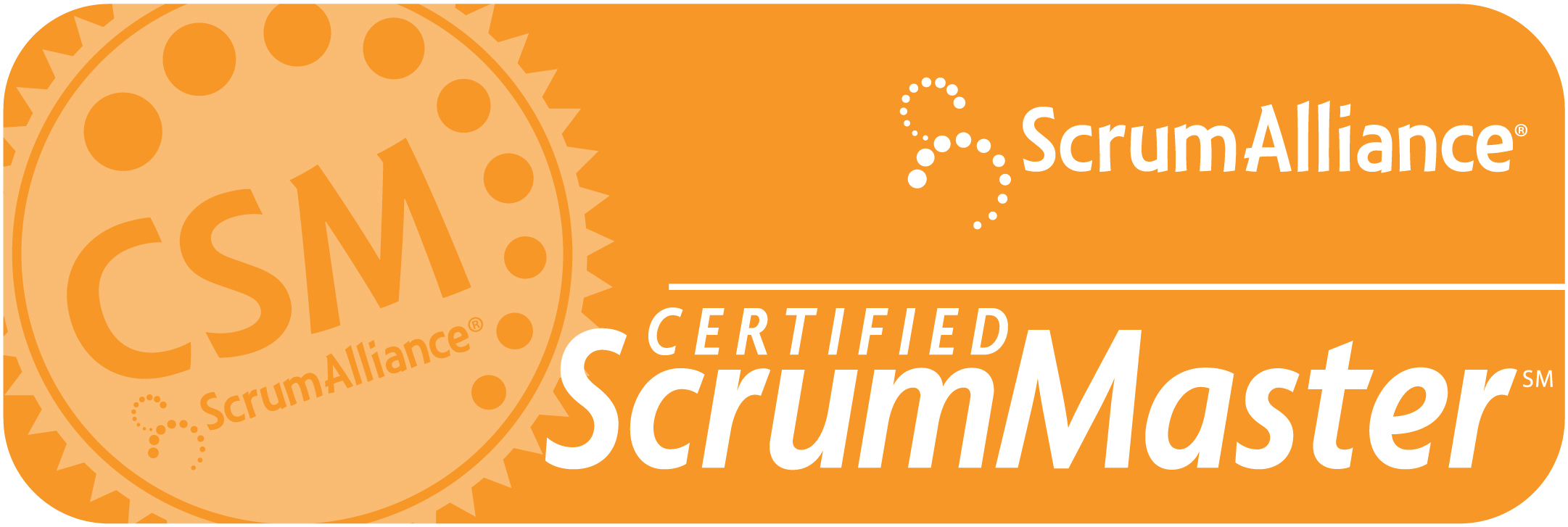 Certified Scrum Master Project Management e-learning course