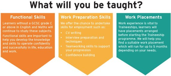 traineeship