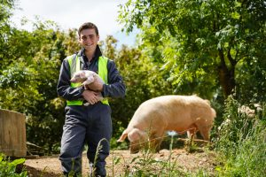bridgwater and taunton college apprenticeships agriculture
