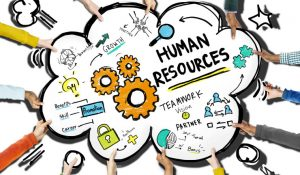 bpp apprenticeships human resources