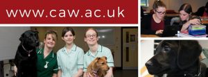 the college of animal welfare apprenticeships