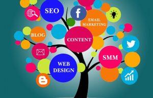 big creative education apprenticeships digital marketing