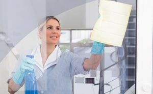education and skills training apprenticeships cleaning services