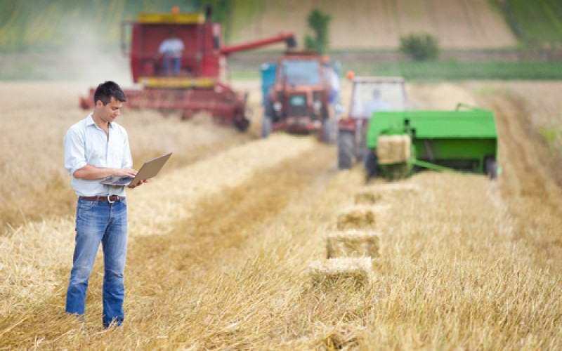 herefordshire and ludlow college apprenticeships agriculture