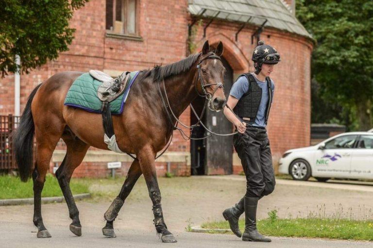 Tom leading horse